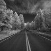 Lake Tahoe Infrared :