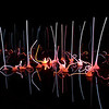 Chihuly San Francisco Exhibit 2008 :